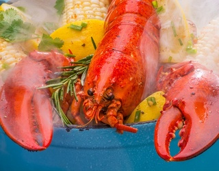 Cabinet of Curiosities: Why Am I Still Spending $30 for Lobster Dinners?
