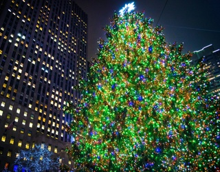The Rockefeller Center Christmas Tree Will Soon Sparkle and Shine for the Season