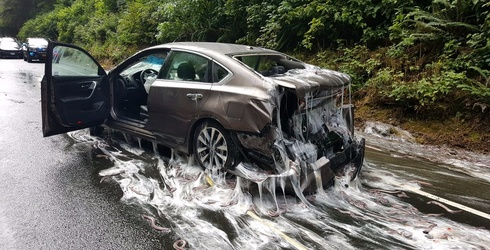 Hundreds of Slime Eels Leaked out All Over a Highway in Oregon