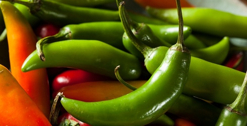 We Won't Get Jalapeño Business if You Can Name These Peppers