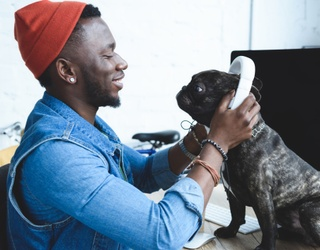 Tell Us About Your Pet and We'll Start Building Them a Spotify Playlist