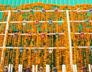 This Día de los Muertos Puzzle Is Blooming With Marigolds