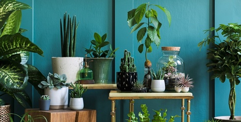Fill Your Home With Leafy Greens With This Indoor Garden Puzzle