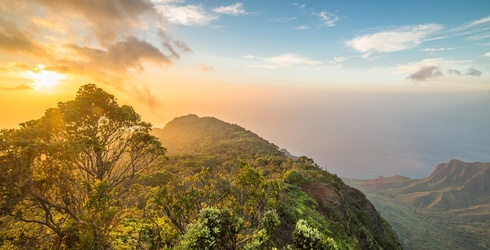 Piece This Puzzle of Hawaii's Kalalau Valley Back Together