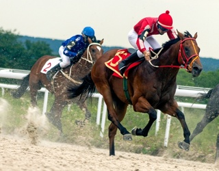 Can You Decide if These Wacky Names Are Kentucky Derby Horses or Just Nonsense?