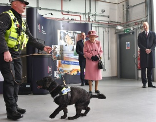Puppy Steals the Show in the Queen's First Outing Since Pandemic Lockdown