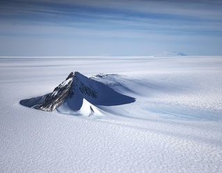 A Monumental Fossil Discovery in Antarctica Sheds New Light on Earth's Angsty Teen Years