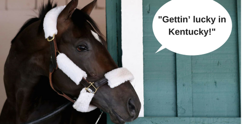 Take This Quiz and We'll Reveal Your Kentucky Derby Horse Name
