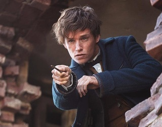 """The Daily Break: """"Fantastic Beasts"""" and a Settled University Lawsuit"""