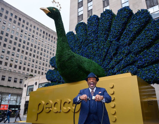 Stay Caught up on All Things NBC When Their Peacock Service Drops