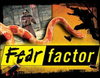 """How Many of These """"Fear Factor"""" Challenges Would You Do?"""