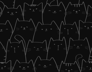 Make Salem Proud and Find the Differences in These Black Cat Pictures