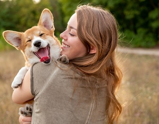 6 Great Dog Toys to Buy For Your Pup!