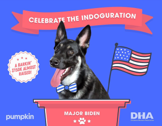 In Case You Missed It, Major Biden's #Indoguration Was a Hit!