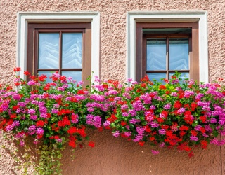This Windowsill Flower Box Puzzle Is Bloomin' Beautiful