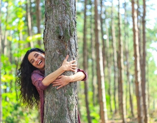 Tree-Hugger Trivia: How Much Do You Know About Trees?