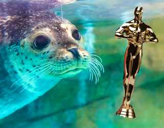 The Aquademy Awards Recognized What Really Matters: The Cute Animals