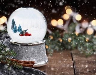 Monday Memory Madness: Shake up Your Morning by Matching the Snow Globe Pairs